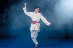 Wordpress Images 29 300x200, Clark's Martial Arts